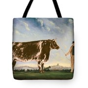 Study Of A Shorthorn Tote Bag
