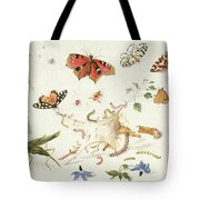 Study Of Insects And Flowers Tote Bag