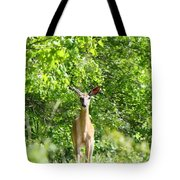 Stumble Upon  Tote Bag