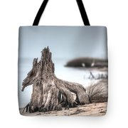 Stump Dragon Tote Bag