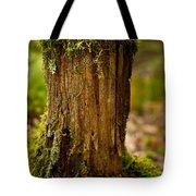 Stump Tote Bag by Shane Holsclaw