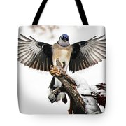 Stumped  Bluejay Tote Bag