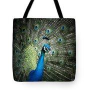 Stunning 1 Tote Bag