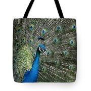 Stunning 2 Tote Bag