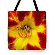 Stunning Daylily  Tote Bag