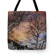 Stunning Painted Tote Bag