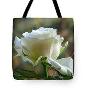 Stunning Rose Tote Bag