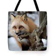 Stunning Sierra Tote Bag
