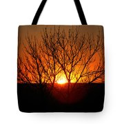 Stunning Stone Park Sunset Tote Bag