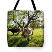 Stunning Texas Longhorns Tote Bag