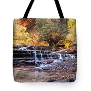 Subway Trail Tote Bag