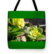 Succulent Bloom Tote Bag