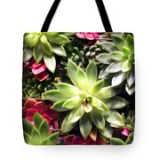 Succulent Beauties Tote Bag
