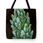Succulent Bloom Tote Bag
