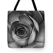 Succulent In Black And White Tote Bag