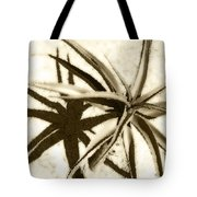 Succulent Under The Scorching Desert Sun Tote Bag