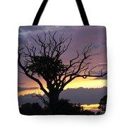 Suffolk Sunset Recalled Tote Bag