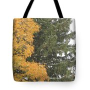 Sugar Maple And Evergreen Tote Bag