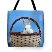 sugar the easter bunny 4 - A curious and cute white rabbit in a hand basket  Tote Bag