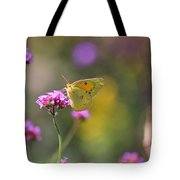 Sulphur Butterfly On Verbena Flower Tote Bag