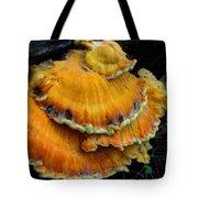 Sulphur Shelf  Tote Bag