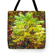 Sumac Leaves In The Fall Tote Bag