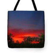 Sumac Sunset Tote Bag