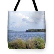 Summer At Guana Lake Tote Bag