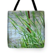 Summer Cattails In The Breeze Tote Bag