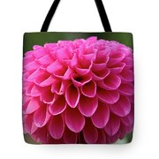 Summer Celebrated Tote Bag