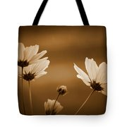 Summer Evening Cosmos Tote Bag