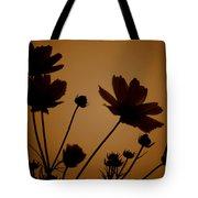 Summer Evening Cosmos  Tote Bag