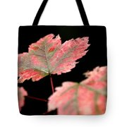 Summer Fall Tote Bag