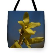 Summer Highlight Tote Bag
