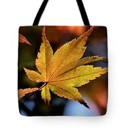 Summer Japanese Maple - 2 Tote Bag