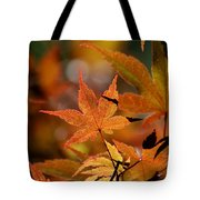 Summer Japanese Maple - 3 Tote Bag
