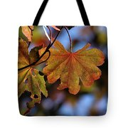 Summer Japanese Maple - 4 Tote Bag