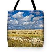 Summer Landscape Of Pag Island Tote Bag