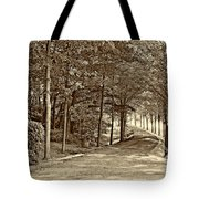 Summer Lane Sepia Tote Bag