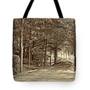 Summer Lane Sepia Tote Bag