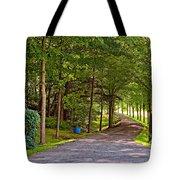 Summer Lane Tote Bag