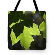 Summer Maple Leaves Tote Bag