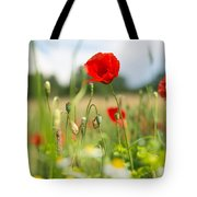 Summer Meadow With Red Poppy Tote Bag