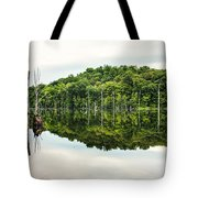 Summer Morning On Monksville Reservoir 2 Tote Bag by Gary Heller
