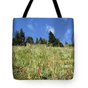 Summer Mountain Landscape Tote Bag