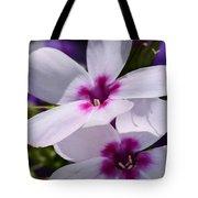 Summer Phlox Tote Bag by Lori Tambakis