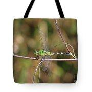 Summer Pondhawk Dragonfly Tote Bag
