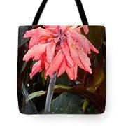 Summer Rain In Maryland Tote Bag