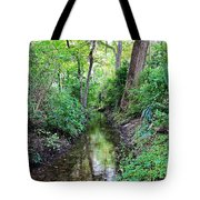 Summer Scene 1 Tote Bag