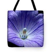 Floral Summer Sensation  Tote Bag